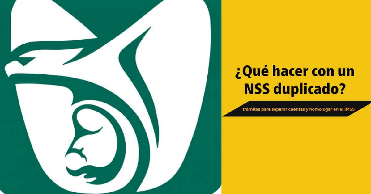 logo imss nss